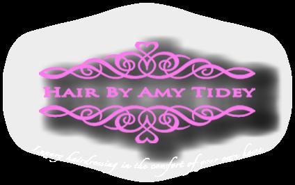 Hair By Amy Tidey Logo